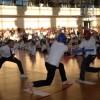 Mistrzostwa Dolnego Śląska w Taekwondo – zdjęcia